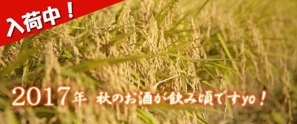 2017年 八木橋商店 山形の秋酒 秋あがり ひやおろし